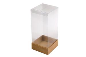 Упаковка с прозрачной крышкой