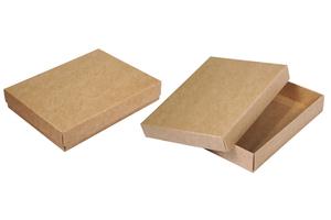 Коробки картонные ;37;42;29; x 135 x 100 мм