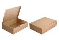 308х220х080 Коробка картонная_Чм